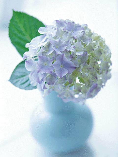   HT京都南 神との対話4を読もう!会